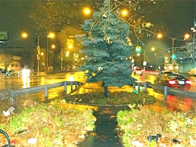Holiday Events - Things To Do During the Holidays in the Bronx NYC | bronx things to do holidays bronx xmas events bronx tree lightings bronx hannukah lightings bronx kwanzaa events bronx holiday events bronx nyc