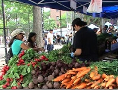 Bronx Farmers Markets & Green Markets - Bronx NYC | BEST Farmers Markets / Green Markets in Bronx & shoppers' tips includes bronx farmers markets bronx green markets Mott Haven Farmers Market, Concourse Green Market, Coop City Farmers Market, Fordham Manor Green Market, Parkchester Farmers Market, City Island Farmers Market, Hunts Point Farmers Market, Claremont Village green markets farmers markets bronx nyc 4.4.17 - 754 // 11.14.18 - 2178