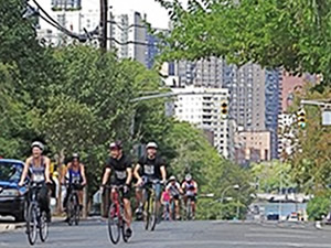 Bronx NYC Century Bike Ride: Bronx Bike Rides Bike Tours Biking Bikes in the Bronx | nyc bronx bike tours bronx bike rides bronx nyc century bike ride bronx bike tour nyc bronx bikes biking bronx nyc
