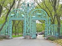 bronx zoo photo things to do belmont fordham neighborhoods bronx things to do nyc